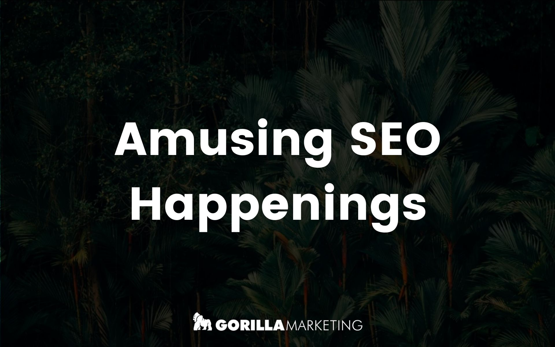 Amusing SEO Things