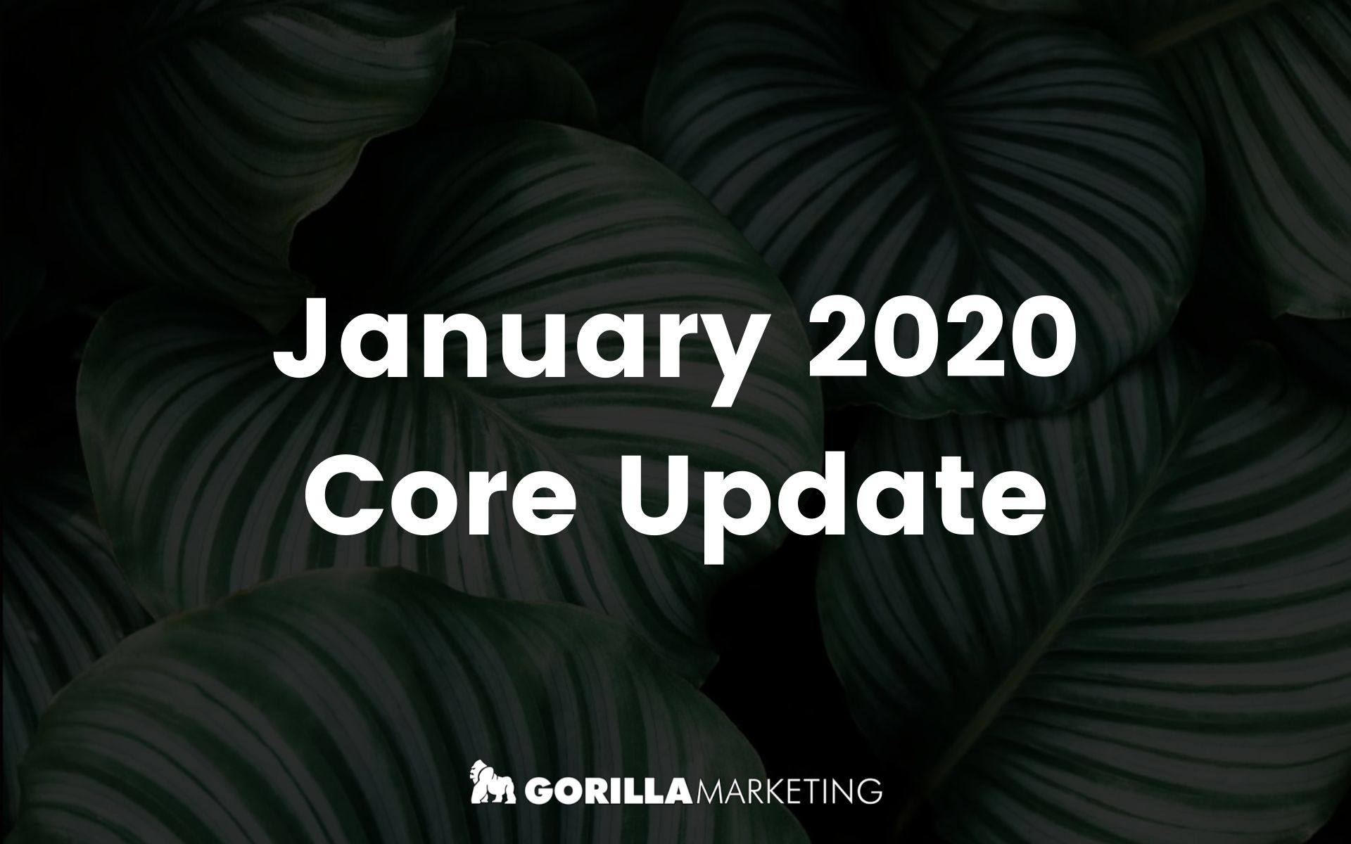 January 2020 Core Update 1