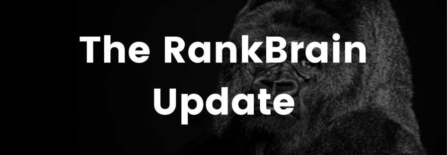 Rankbrain Update