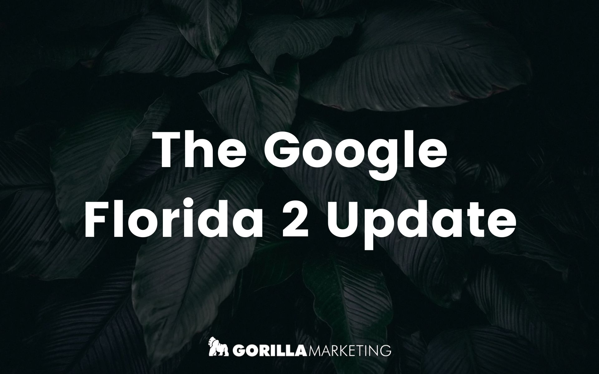 The Florida 2 Update