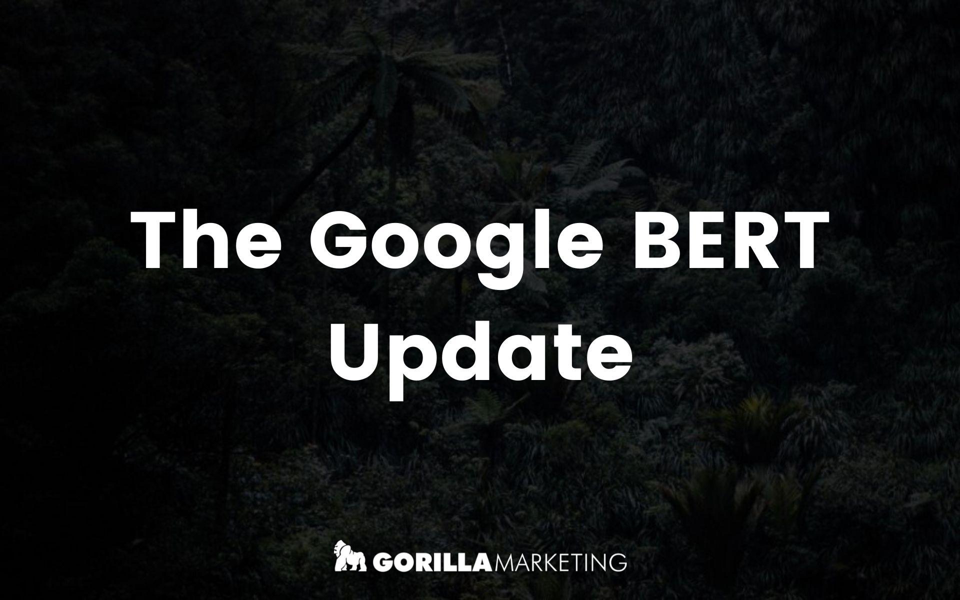 The Google BERT Update 1