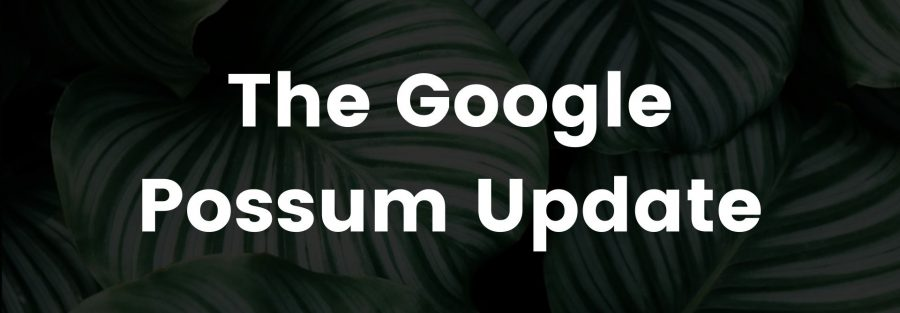The Google Possum Update