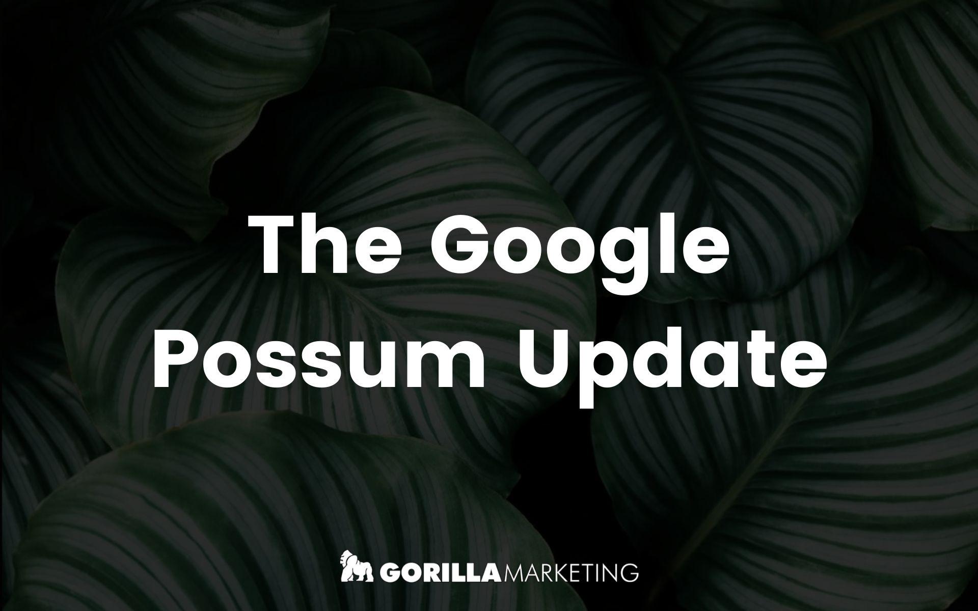 The Google Possum Update