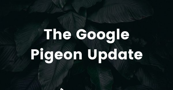 The Pigeon Update