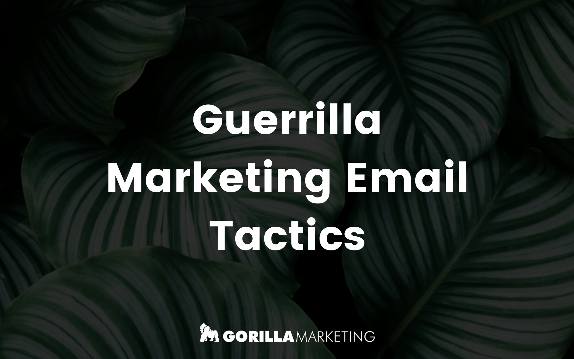 Guerilla Email Marketing